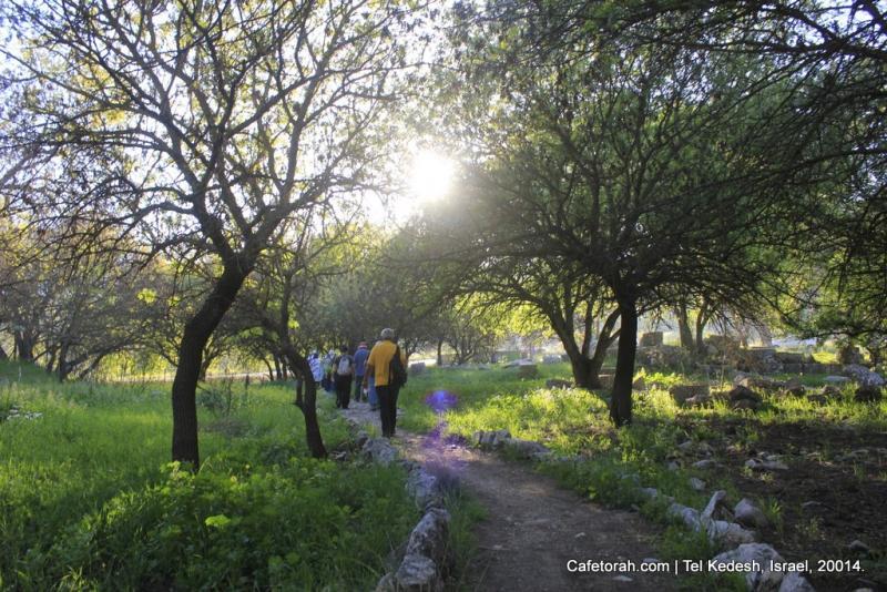 Tel Kedesh na Alta Galileia