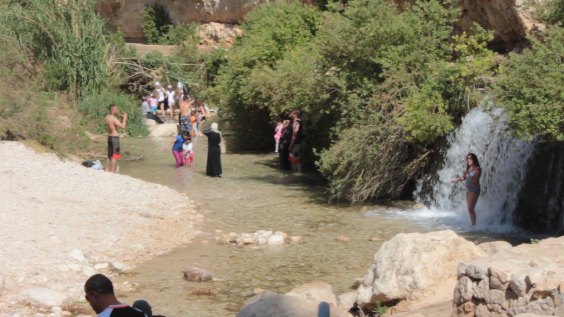 wadi-qelt-fontes